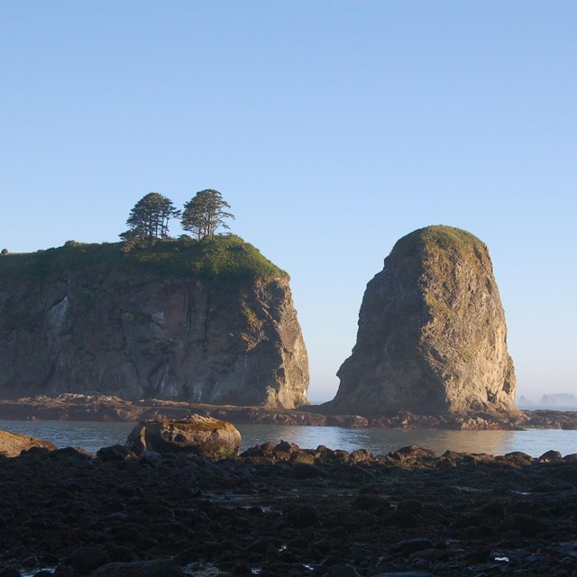 rock coast with rock outcrops