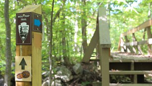 Trail post next to a bridge