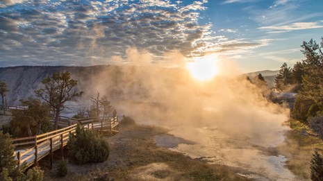 A person enjoys the sunrise at Mammoth Hot Springs