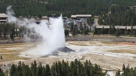People watch from a distance as a geyser erupts steam and water high into the air.