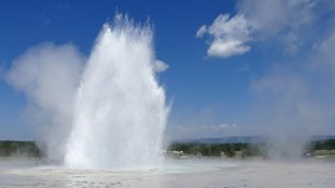 Eruption plume of Great Fountain Geyser.