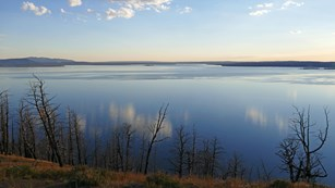 View of a still Yellowstone Lake shortly after sunrise, with the sky shades of blue and yellow.