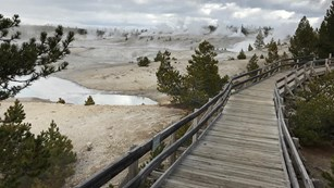 A boardwalk winds through a forested area, providing views on a stark, gray, steaming landscape.