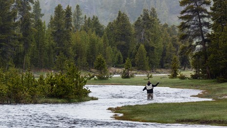 An angler standing in the water and fly-fishing during a misty day.