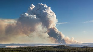 A smoke plume from a wildfire billows up into the sky, reducing the air quality.