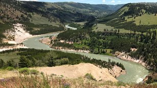 The Yellowstone River meanders through a forested valley, exposing tan rock.