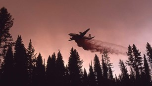 A plane drops water on a burning forest during the 1988 fires.