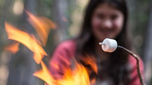 Girl roasting marshmallow over an open fire.