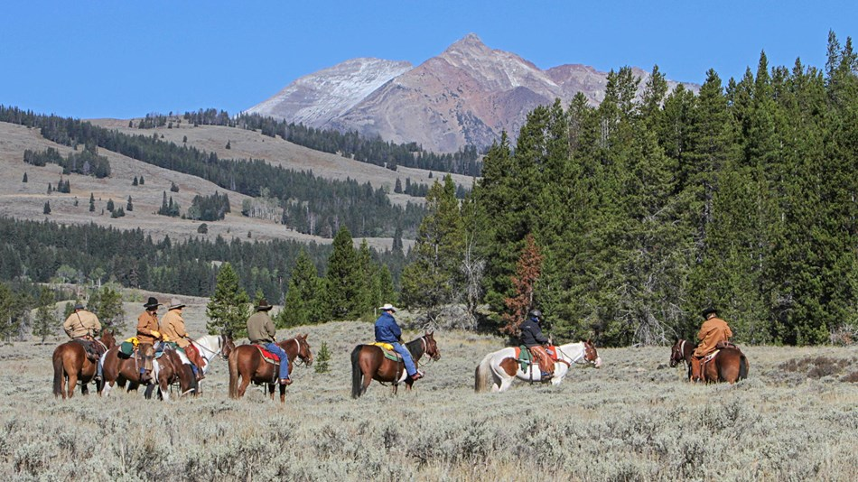 Horseback riders in Yellowstone