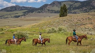 Three horseback riders travel across a rolling prairie.