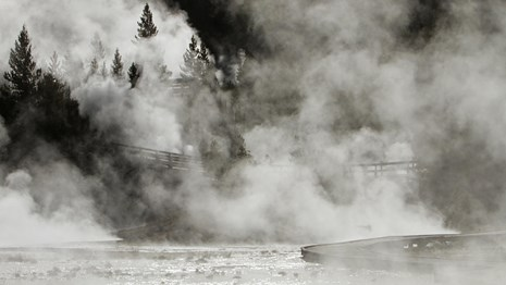 Steam rises from hot springs and runoff flowing in front of a wooded hillside.