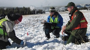 A park ranger accompanies researchers during the winter field season
