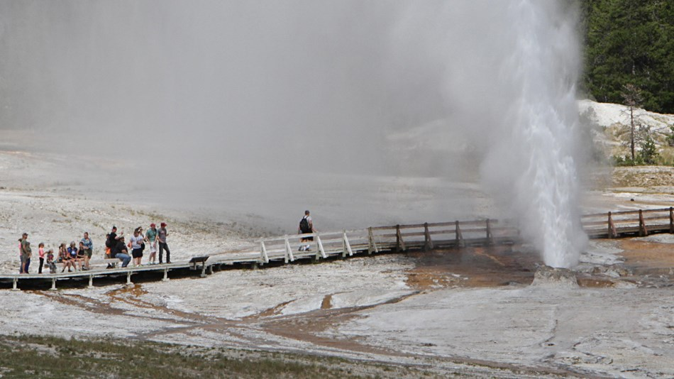 Visitors watching a geyser erupt water and steam into the area from the safety of the boardwalk.
