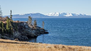 Looking out over Yellowstone Lake at Storm Point with the snow-capped Absaroka Range in view