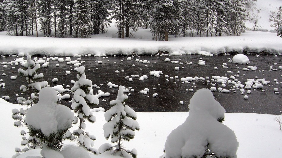 River flowing through a wintery forest scene covered in snow.
