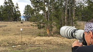 A man looks through a large spotting scope at a bear in the distance