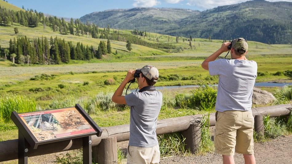 Photo of people watching wildlife in Lamar Valley