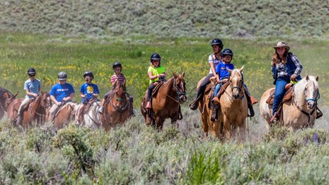 A group of visitors wearing helmets and riding horses across a field.