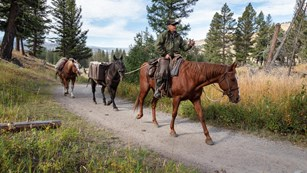 A ranger riding a horse leads two other horses down a bare ground trail.
