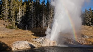 A rainbow stands out as a geyser erupts.