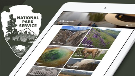 Yellowstone's app running on a tablet