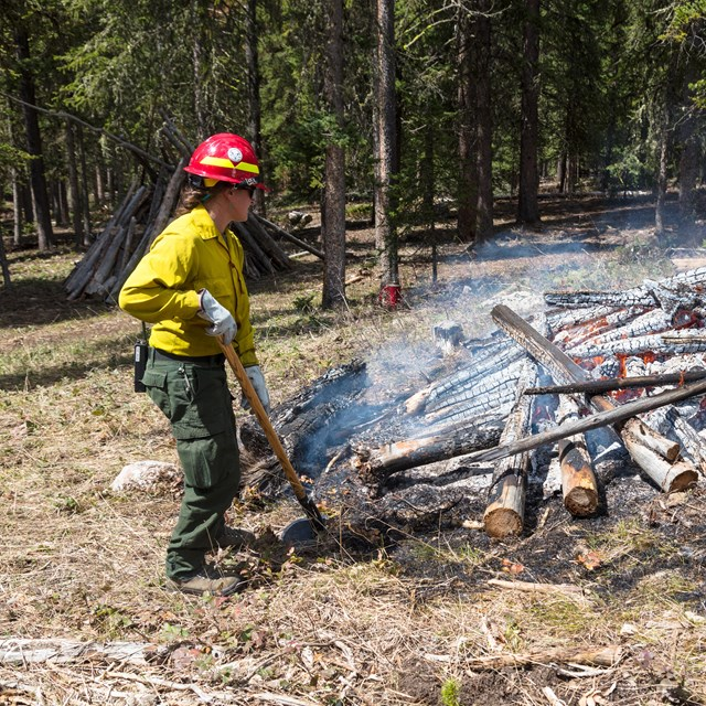 A wildfire crew stands closely by a large pile of burning logs.