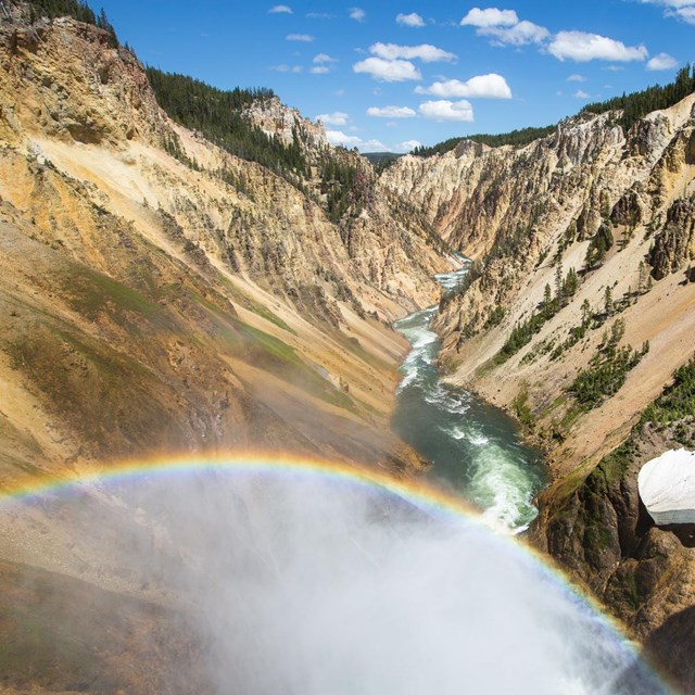 Looking down the Grand Canyon of the Yellowstone from the Brink of Lower Falls