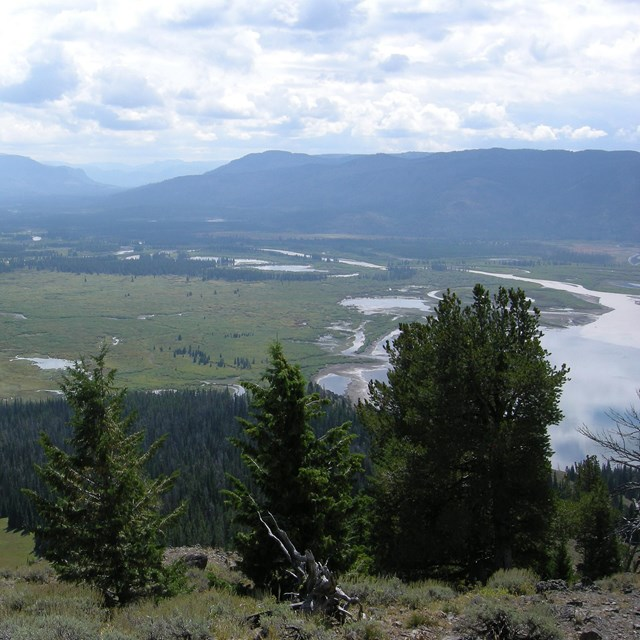 Yellowstone River delta