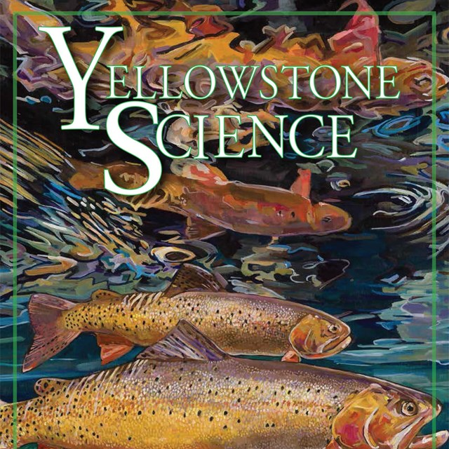 The cover of an issue of Yellowstone Science