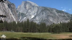 Image from the Ahwahnee Meadow webcam showing Half Dome