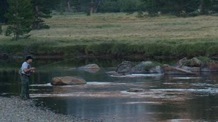 Fisherman in Tuolumne Meadows