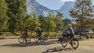 Bicyclists in Yosemite Valley
