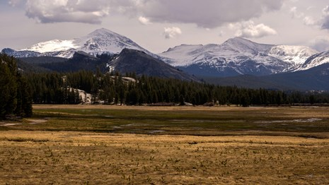 View of Tuolumne Meadows and Pothole Dome