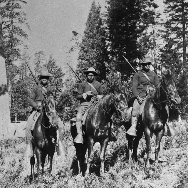Five African-American mounted infantrymen posing on horseback in a forest
