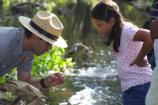 Ranger Showing Girl Mayfly in Medea Creek