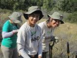 SAMO Youth Building Pitfall Traps