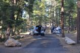 Grand Canyon Mather Campground SR 6022