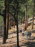 Grand Canyon National Park: NR Cliff Springs Trail 0130