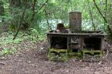 Rusted stove in natural setting