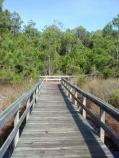 Hammock Hills Nature Trail boardwalk