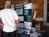 Learn about coastal wildlife with hands-on activities