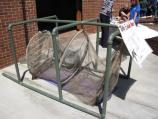 Turtle Excluder Nets (TEDs) help keep turtles from being caught in nets
