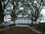 View of the front of Oakland's main house during February snowfall.