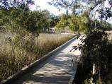 Part of the park interpretive trail, the boardwalk leads to a tidal marsh.