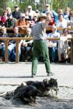 Ranger leads sled dog demonstration