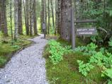 The Bartlett Cove campground is a walk-in campground.