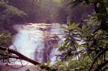 Indian Creek Falls is one of 2 waterfalls that you can enjoy on an easy 1.6 mile roundtrip hike in the Deep Creek area.