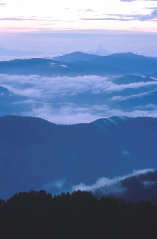 Clouds in the Great Smoky Mountains (Image courtesy NPS)