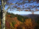 Fall View from Newfound Gap