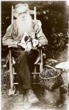 Historic photo of an elderly man with a long, white beard sitting in a rocking chair beside a basket of cherries